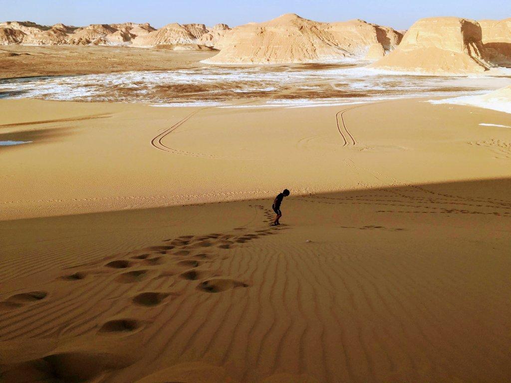 砂漠ボード