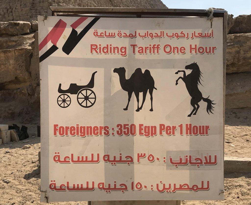 ギザのピラミッドのラクダと馬の正規料金
